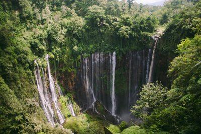 Ambiente: Indonesien